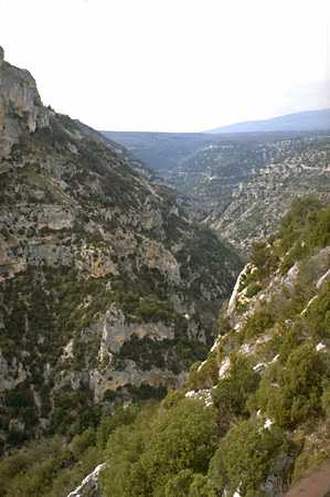 Nesque Gorges photo nesque032B.jpg