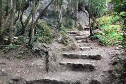 Steps built into the trail up