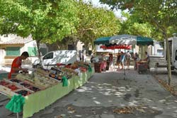 Small Thursday market in Gaujac with
