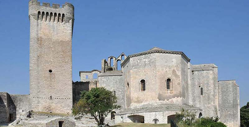 Surrounding Arles photo montmajour-abbey0155bflat.jpg