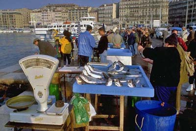 [villphotos]marseille-fish003b400.jpg