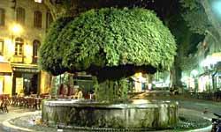 Salon de provence visit photos travel info and hotels for Hotel du theatre salon de provence